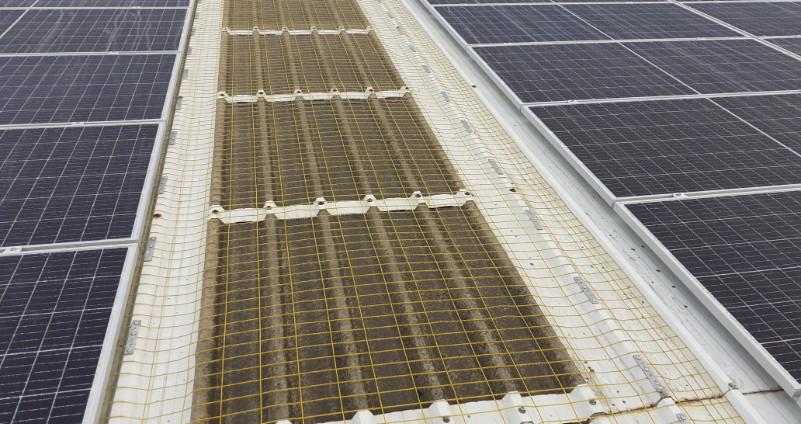 mallas metálicas sobre lucernarios para evitar caídas desde la cubierta